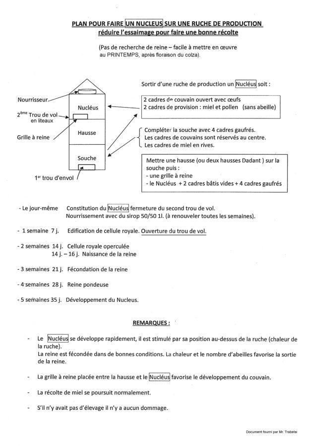methode nucleus(1)