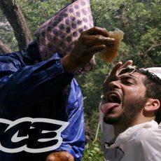 Défoncés au miel hallucinogène népalais – VICE